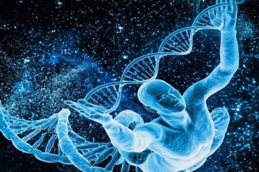 Epigenetica: il mondo intorno è anche dentro di te