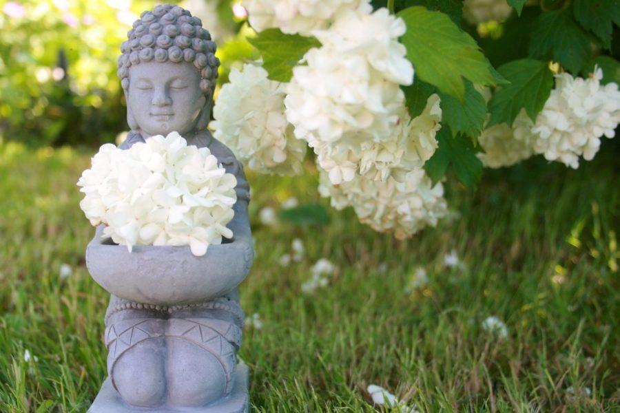 Kundalini Yoga e Shakti Dance in natura